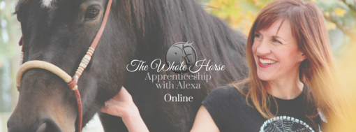 The Whole Horse (3)