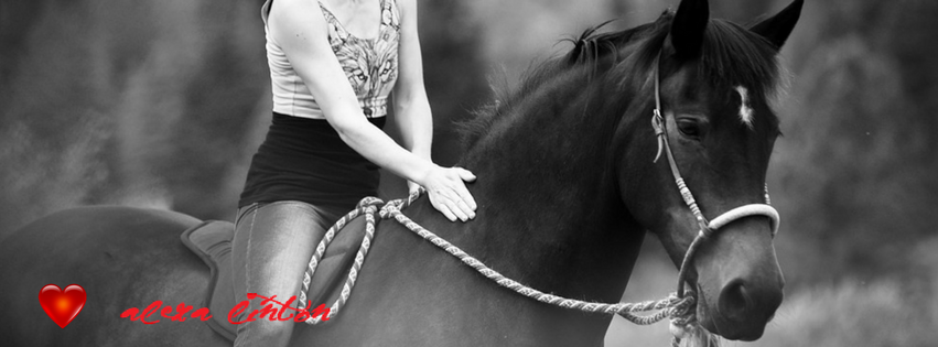 Get-it-done Horsemanship: Effective or abusive?