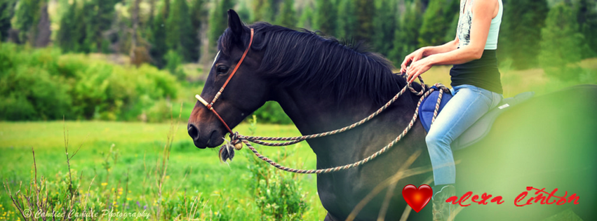A Horse Girl's Perspective on Privilege
