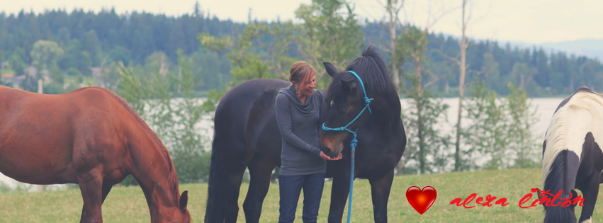 How do you know if you've found your heart horse?