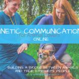 kinetic-communication